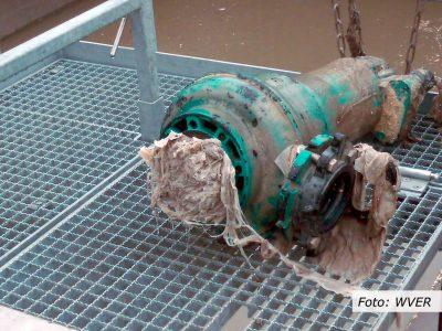 Wasserwirtschaft: Toilettenpapier-Engpass gefährdet Abwassernetz