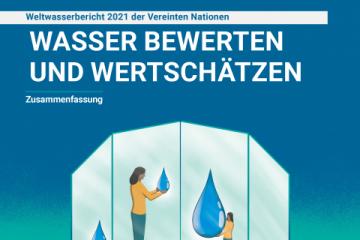 UN-Weltwasserbericht 2021: Der Wert von Wasser