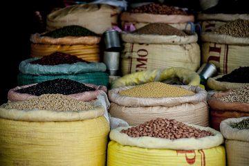 """""""Menschenrecht auf Nahrung und Wasser sind eng miteinander verwoben: Agrar- und Handelspolitik anpassen und dabei die Wasserressourcen in den Blick nehmen"""""""