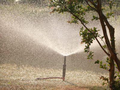 WATER FUTURES – DIE ZUKUNFT DES WASSERS?