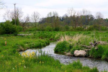 AöW fordert Bekenntnis zu Wasserwirtschaft in öffentlicher Hand und konsequente Vermeidung von Gewässerbelastungen
